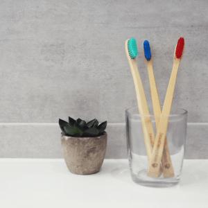 bamboo toothbrushes display