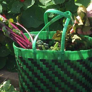 IMG 3111 strapping basket Blog